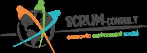 SCRUM-Consult
